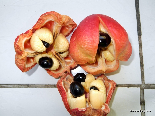 1-ackee in pod